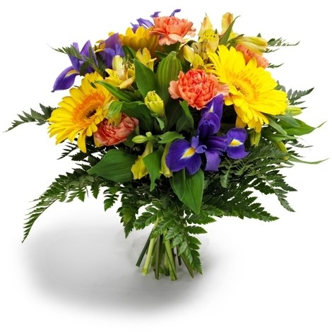 Giftblooms- Online Gifts Shop: Flowers Delivery For All Occasion